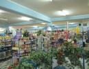 supermarket-toplica-12
